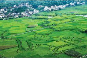 关于召开绿色建材评价及绿色农房建设技术交流会的通知